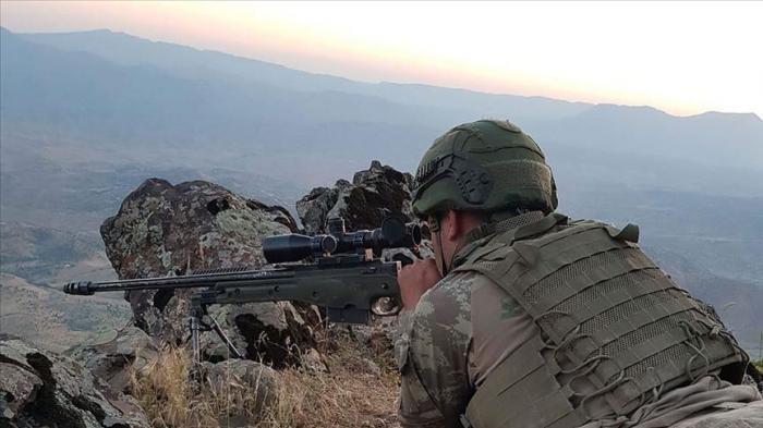Turkey neutralizes 10 PKK terrorists in northern Iraq