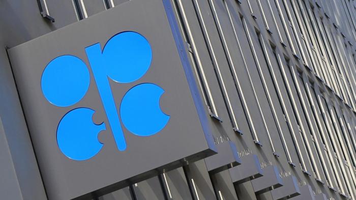 OPEC-in neft hasilatı azalıb