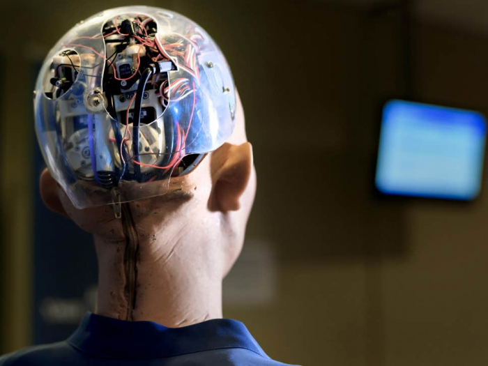 Should sentient robots have the same rights as humans?-  iWONDER