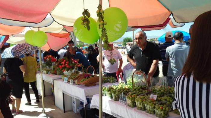 """Naxçıvanda """"Göycə"""" Festivalı keçirilir"""