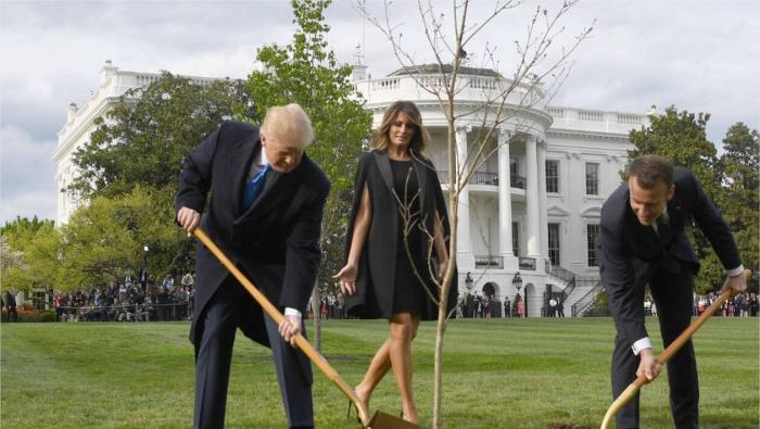 Maison-Blanche: Macron va faire envoyer un autre chêne à Trump