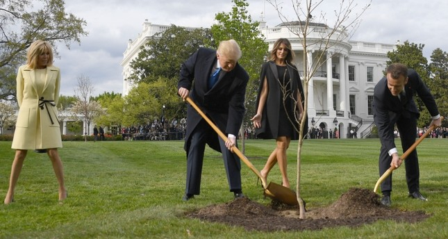 Trump-Macron friendship tree dies after White House planting