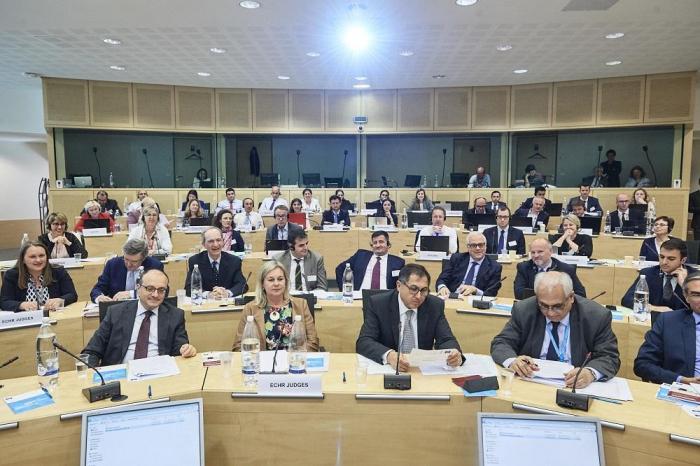 عقد اجتماع خاص للمحكمة الأوروبية لحقوق الإنسان -   صور