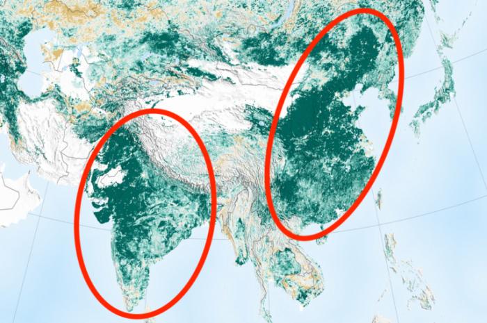 La NASA affirme que la Terre est plus verte qu'il y a 20 ans, grâce à la Chine et l'Inde
