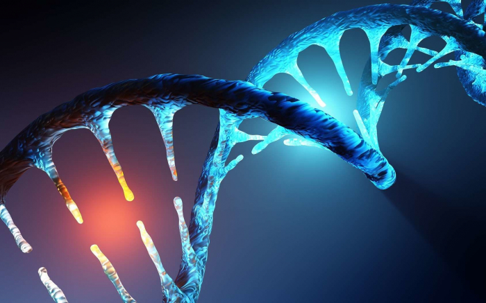 95 % des êtres humains possèdent des cellules mutantes