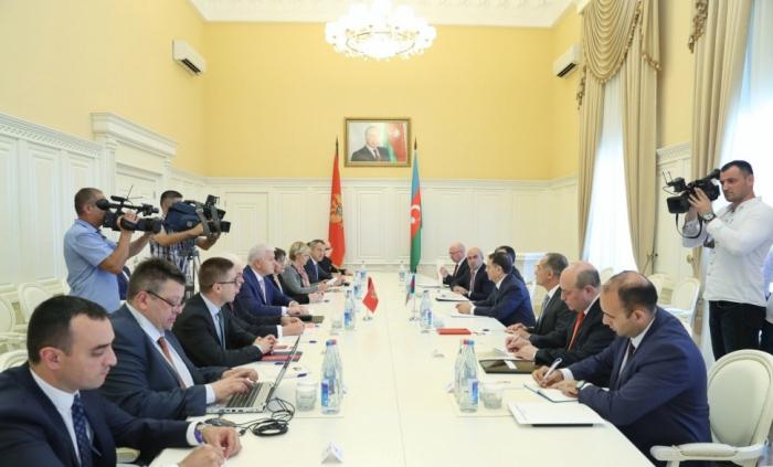 Azərbaycan və Monteneqronun Baş nazirləri görüşüb