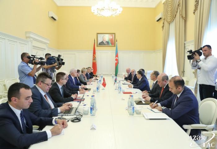 Rencontre du Premier ministre azerbaïdjanais avec son homologue monténégrin