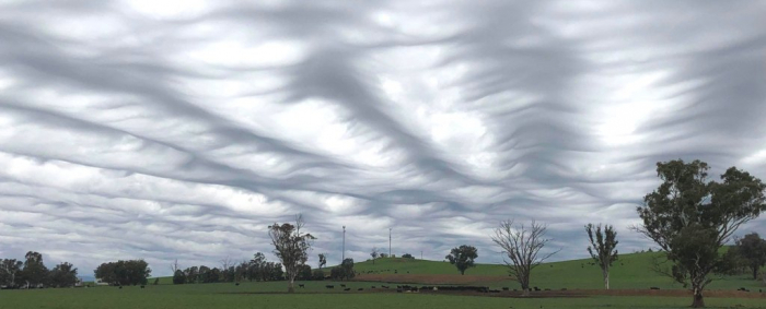This stunning wave-like cloud formation wasn