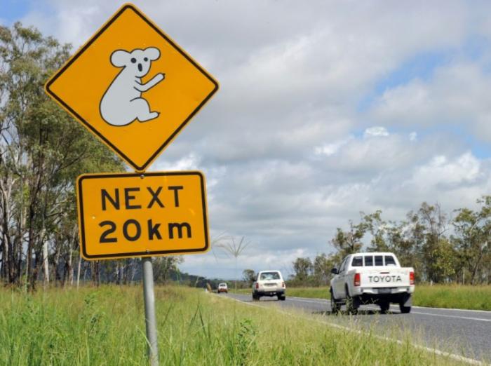 Australie: quatre enfants font 1000 kilomètres au volant d