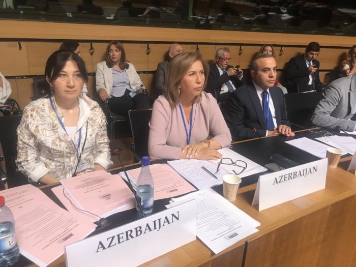 Une délégation parlementaire azerbaïdjanaise participeà la session annuelle de l'AP de l'OSCE