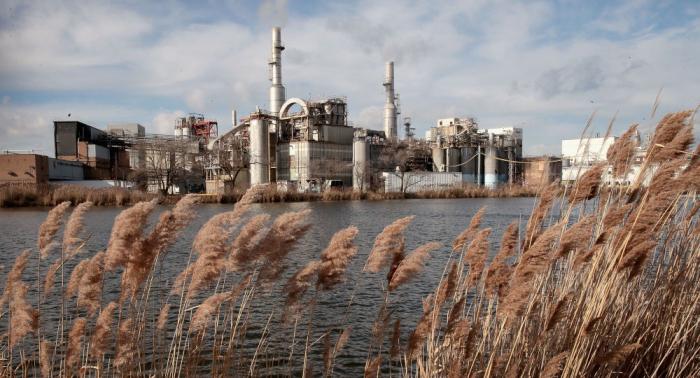 """Kinderarbeit, Salmonellen, Abholzung: US-Firma """"schlimmstes Unternehmen der Welt"""""""