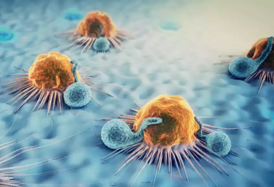 Chinese scientists develop tumor-specific anti-cancer therapy