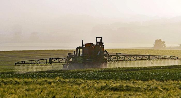 Pestizidfreie Kommunen: Glyphosat wird zunehmend auf Pachtflächen verboten