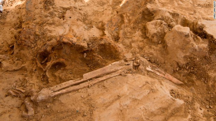 Human remains and musket balls found at battle site marking Napoleon Bonaparte