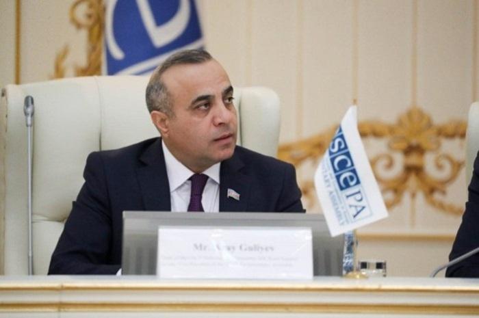 Azay Quliyev ATƏT PA-da qəbul olunan Qətnamənin əhəmiyyətini şərh edb