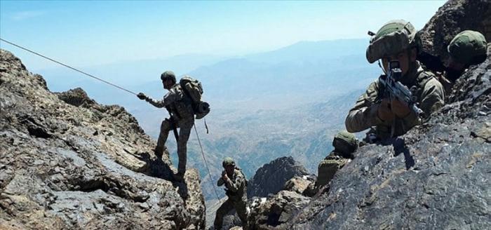"""""""Pəncə hərəkatı"""" davam edir - 64 terrorçu zərərsizləşdirilib"""