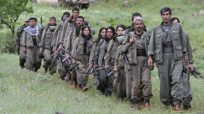 Türkiyədə 5 terrorçu saxlanıldı