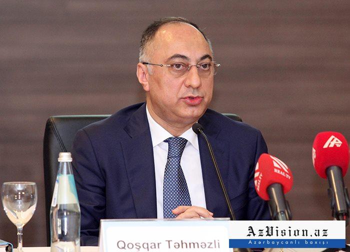 """""""Bəzi ekspertlər qaragüruhçuluqla məşğuldurlar"""" - Qoşqar Təhməzli"""