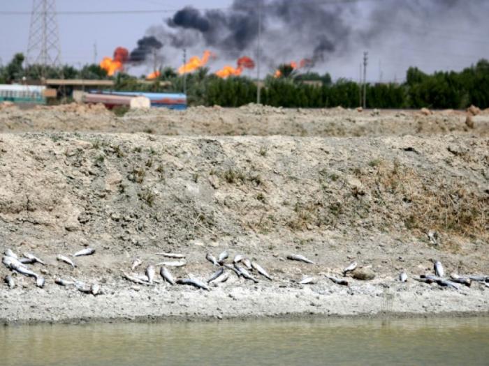 Irak:   Bassora risque de subir une nouvelle «crise de l