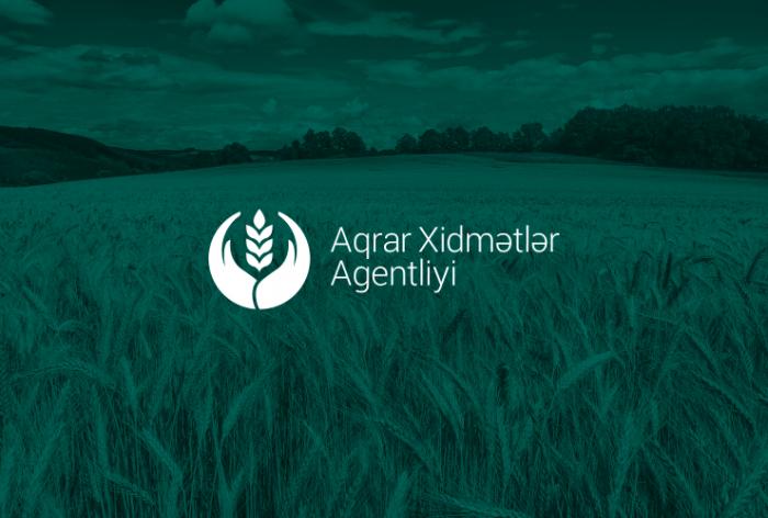 Aqrar Xidmətlər Agentliyi toxum alıcılarına müraciət edib