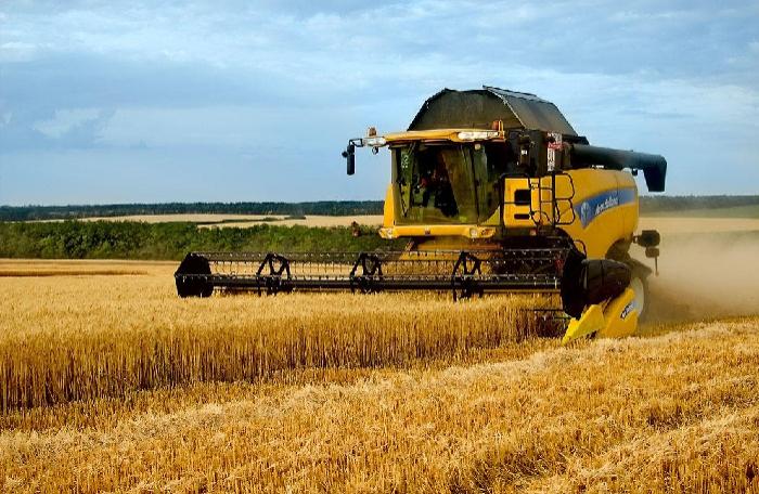 800 min hektara yaxın ərazidə taxıl biçilib