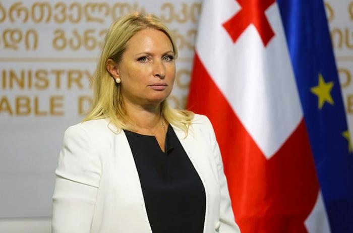El gobierno georgiano se dispone a cooperar con empresas azerbaiyanas