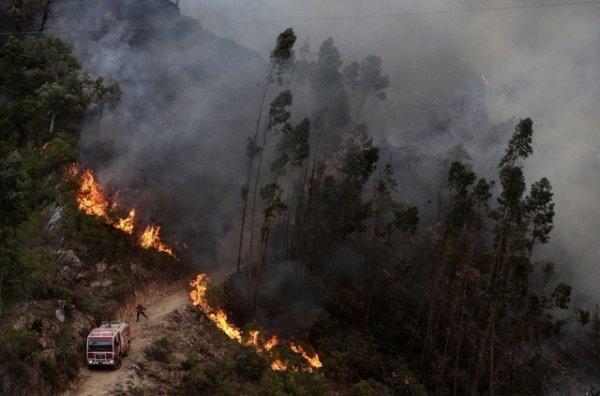 Feux de forêt dans le centre du Portugal,   plus de 1000 pompiers mobilisés