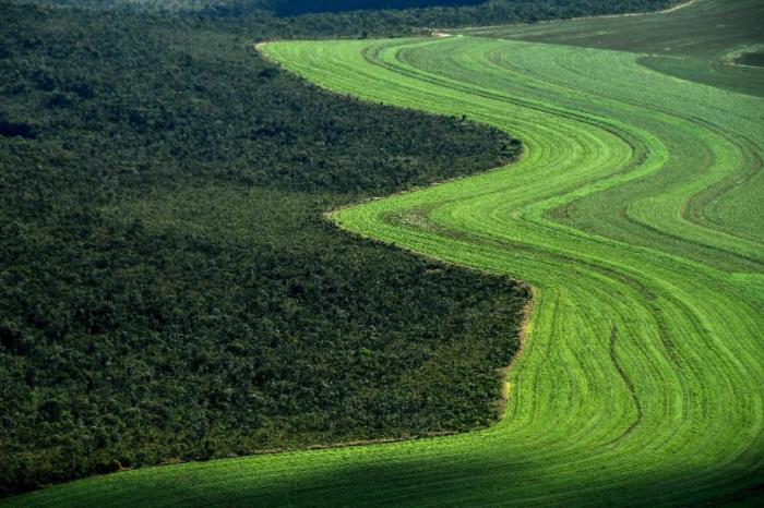 Comment nourrir 10 milliards de personnes sans ravager la planète? Le défi de l'humanité