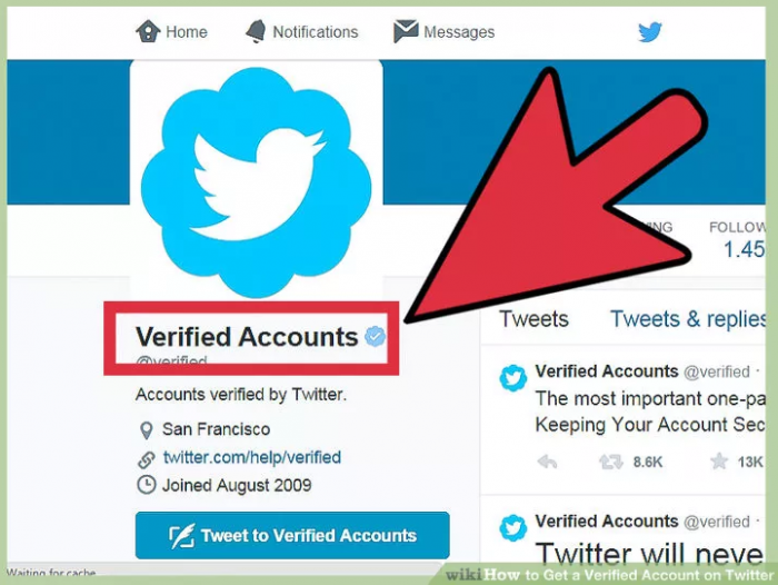 Why do people care about being verified?-  iWONDER