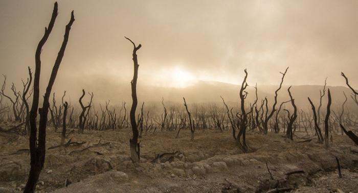 UNO warnt vor baldiger globaler Lebensmittelknappheit