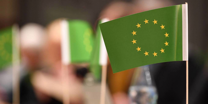 The Case for an EU Climate and Nature Czar-  OPINION