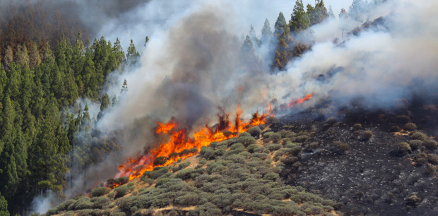 Mass evacuations in Gran Canaria because of huge mountain fire
