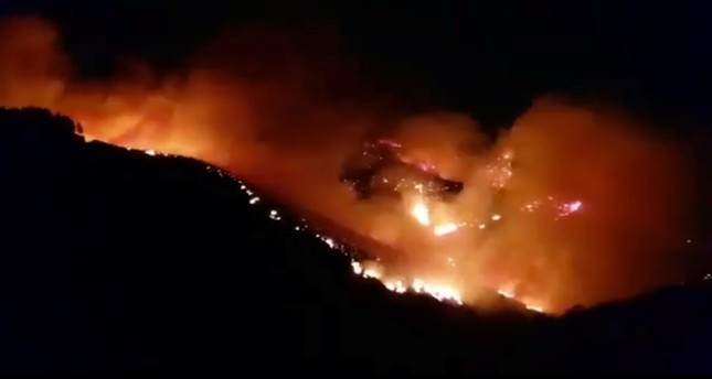 Wildfire burns 1,000 hectares of forest in Canary Islands