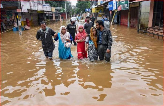 Elefantes son arrastrados por un río en medio de las mortales inundaciones que azotan la India-  VİDEO