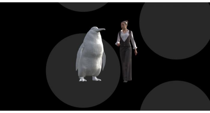 Descubren un pingüino prehistórico del tamaño de un humano