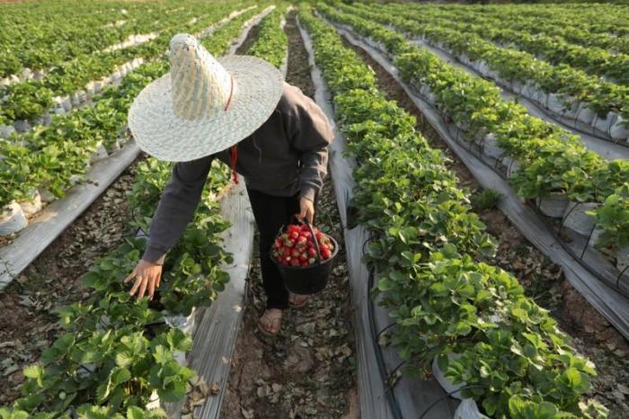 Thailand legt milliardenschweres Konjunkturprogramm auf