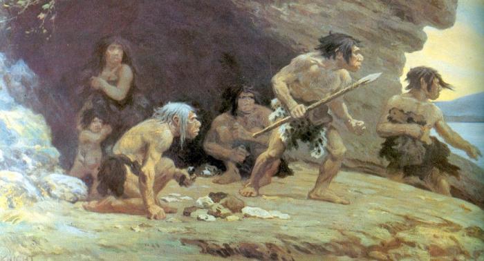 Forscher:   Intelligenz des Neandertalers fraglich