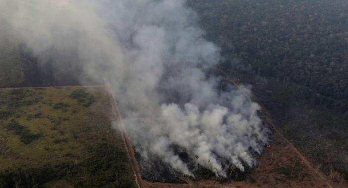 EN VIVO:   Manifestación en Londres por los incendios en la Amazonía