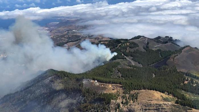 Waldbrand auf Gran Canaria bricht erneut aus