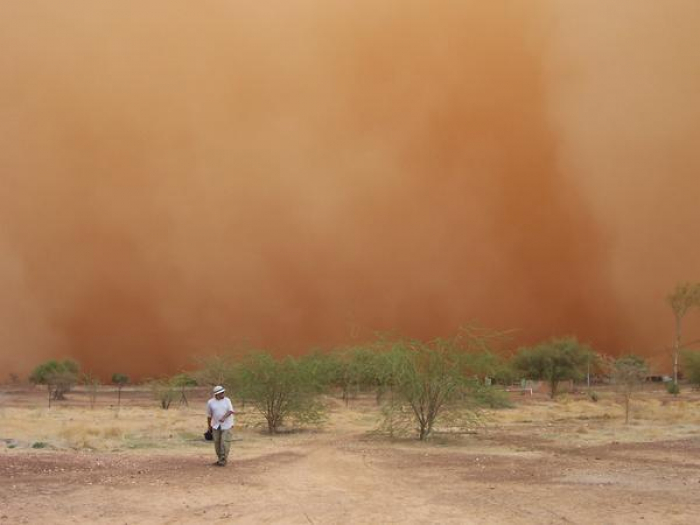 Dust storm sends 368 people to hospital in southeastern Iran