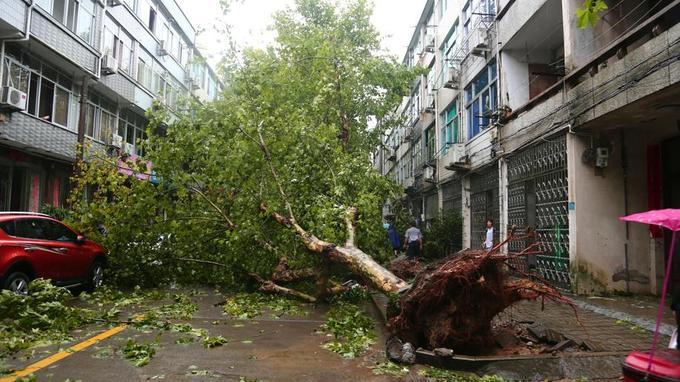 Le bilan du typhon dans l