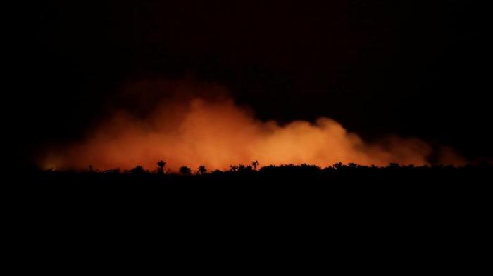 Die Grüne Lunge brennt, Bolsonaro spottet