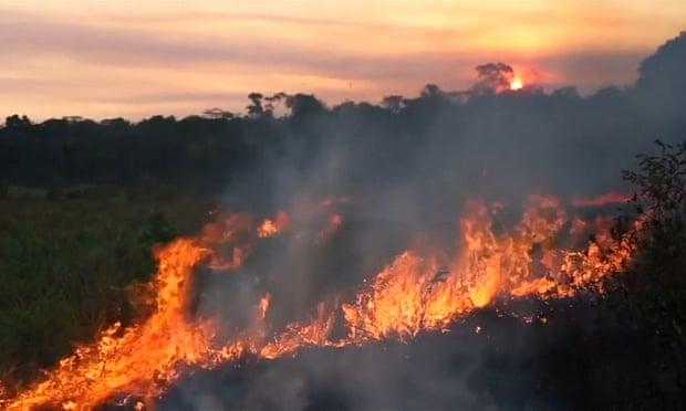 Amazon rainforest fires: Macron calls for