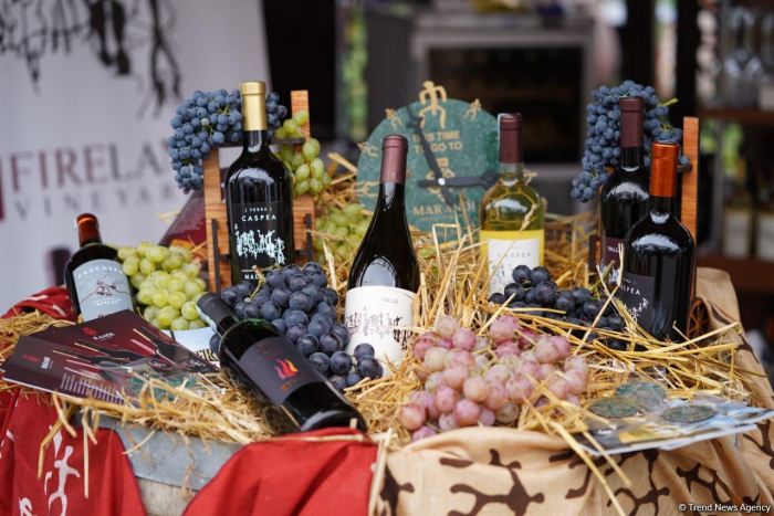 Las imágenes últimas del Festival de la Uva y el Vino