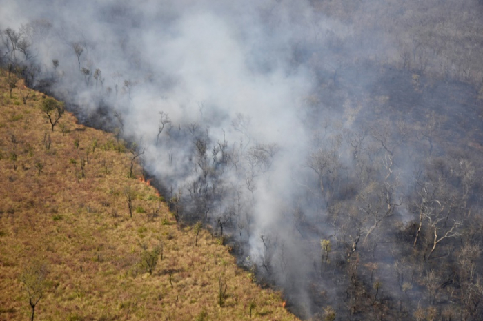 Bolivia has lost 1.7 million hectares to fire: government