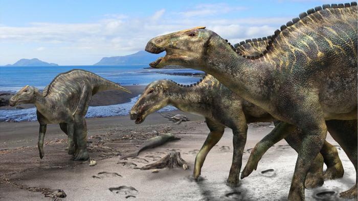 Descubren una nueva especie de dinosaurios, la más grande que habitaba las islas de Japón
