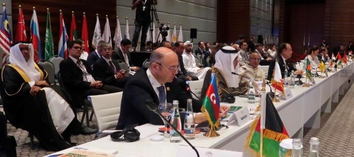 Ministro de Energía de Azerbaiyán participa en la 8ª reunión de Ministros de Energía de Asia