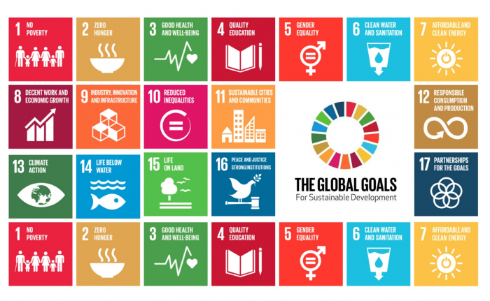 Getting serious about the SDGs-  OPINION