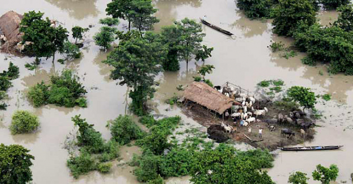 Heavy rains, floods leave over 200 dead in central India