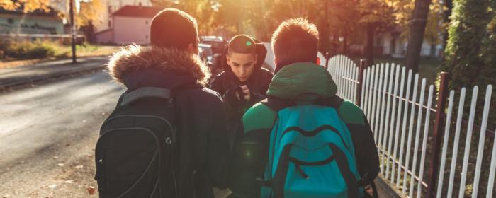 Why children bully each other -   iWONDER